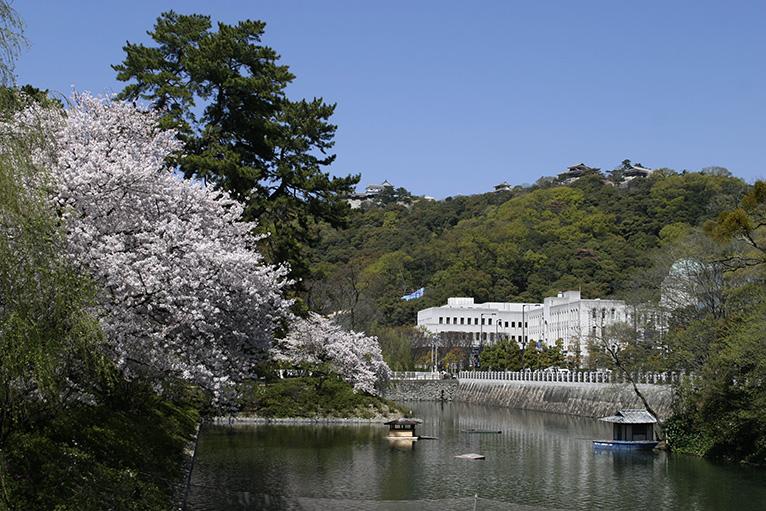 春、お濠の桜も美しい