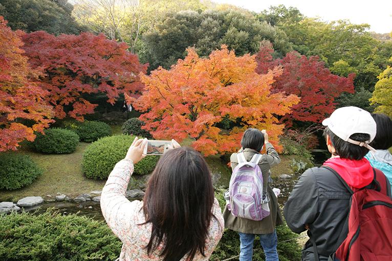 外国人もいっぱい。紅葉前で記念写真。