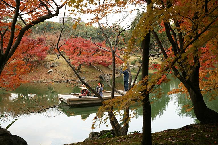 タカオモミジが植えられた楓岸、紅葉と南湖もきれいに見える。