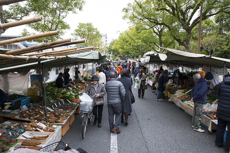 追手筋の約1.3kmに500店ほどのお店が並ぶ日曜市。