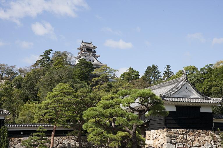 日曜市は高知城につながる、時間があれば登ってみよう。