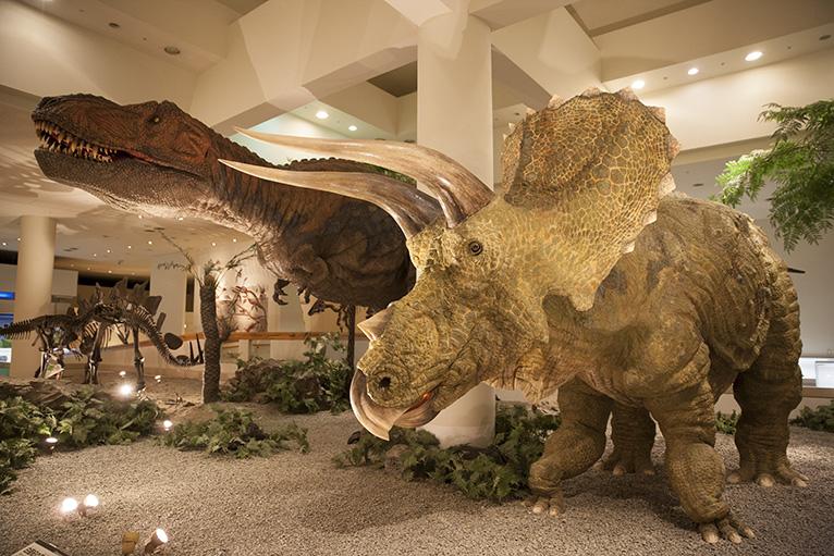 巨大なティラノサウルスとトリケラトプス