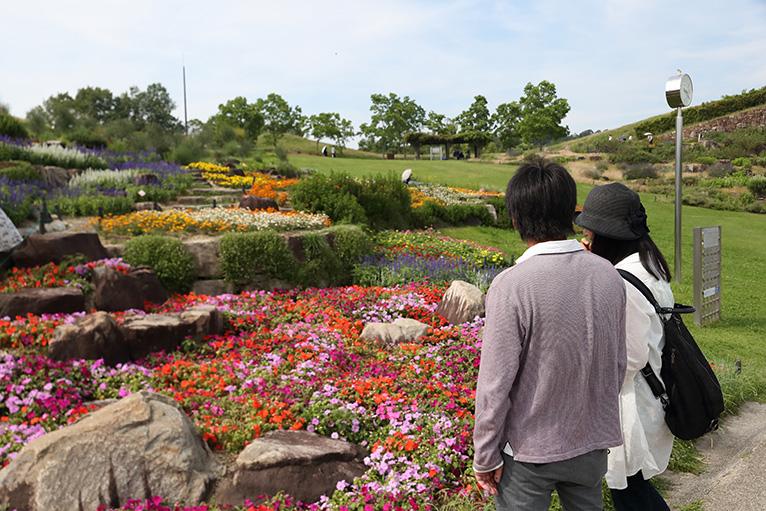 園内には季節ごとに様々な花が咲き誇る