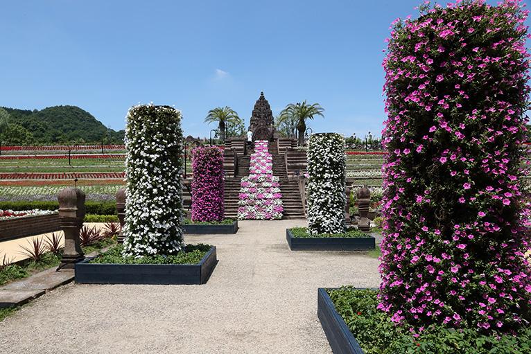 季節の花が咲き誇るレオマ花ワールド